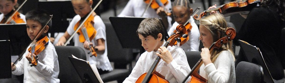 Youth Philharmonic